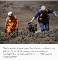 Paulo Glinski solicita Moção de Parabenização para Capitão Clemente Michels, que atua na tragédia de Brumadinho, em Minas Gerais