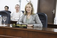 Vereadora Norma pede por projetos que visem à geração de renda da população canoinhense