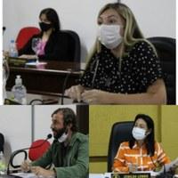 Vereadores aprovam em primeira votação projeto que cria a Procuradoria da Mulher em Canoinhas